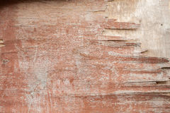 старая покрашенная текстура деревянная Стоковая Фотография