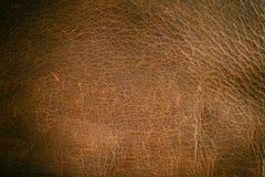 Старая поцарапанная кожа стоковая фотография rf