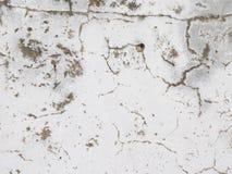 старая поцарапанная стена Стоковые Изображения RF