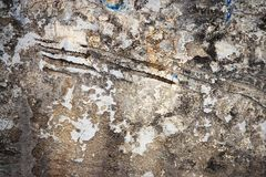 Старая поцарапанная уродская стена Стоковое Фото