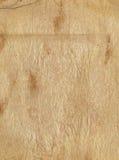 Старая предпосылка листа страницы бумаги grunge Стоковая Фотография RF