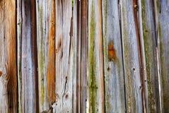 Старая предпосылка древесины grunge стоковые изображения rf