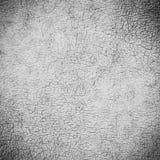 старая предпосылки кожаная Стоковое Фото