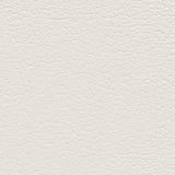 старая предпосылки кожаная Стоковая Фотография RF