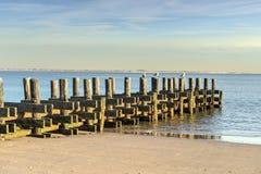 Старая пристань на пляже Стоковые Фото