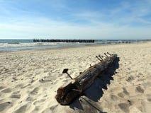 Старая пристань остается, Литва Стоковые Изображения