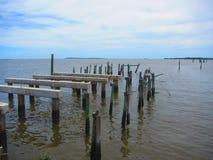 Старая пристань рыбной ловли, побережье природы Флориды кедра ключевое Стоковое фото RF