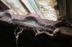 Старая распадаясь сеть ` s паука под окном Стоковые Фотографии RF