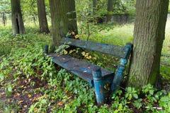 Старая рахитичная деревянная скамья в покинутом парке Стоковая Фотография RF
