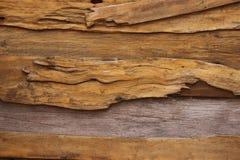 старая древесина стены текстуры Стоковые Изображения RF