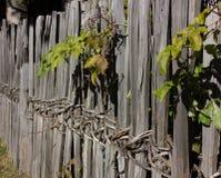 Старая древообразная загородка стоковые фотографии rf