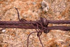старая ржавая веревочка для моста Стоковая Фотография RF
