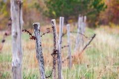 Старая ржавая проволочная изгородь Стоковое фото RF