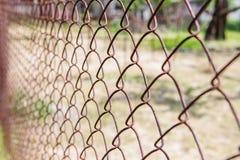 Старая ржавая сетка в запачкать цветастая картина Стоковая Фотография RF