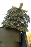 Старая рождественская елка стоковое изображение