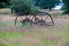 Старая сельско-хозяйственная техника в overgrown поле стоковое изображение rf