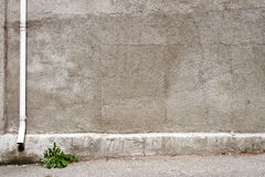 Старая серая стена гипсолита Стоковые Фото