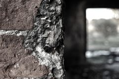 Старая серая стена Стоковое Фото