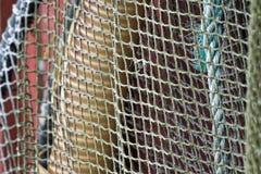 Старая сеть Стоковое фото RF