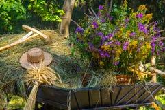 Старая сельская тележка с сухой травой и wildflowers Стоковое Фото