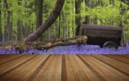 Старая сельско-хозяйственная техника в живом ландшафте леса весны bluebell Стоковые Фотографии RF
