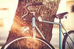 Старая склонность велосипеда против дерева Стоковое Изображение RF