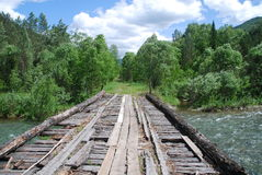 старая сломанная мостом Стоковые Изображения