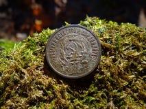 Старая советская серебряная монета на зеленом мхе Стоковое Изображение RF