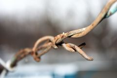 Старая спиральная загородка колючей проволоки безопасностью изолированная на белой предпосылке стоковая фотография