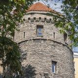 Старая средневековая башня крепости в Таллине Стоковая Фотография RF