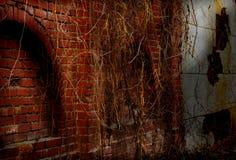 Старая стена блоков гранита Стоковое Изображение RF