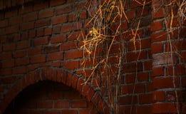 Старая стена блоков гранита Стоковые Фотографии RF