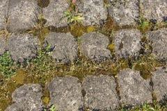 Старая стена больших круглых камней Стоковое Изображение