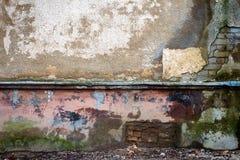 Старая стена гипсолита Стоковое Изображение RF