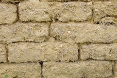 Старая стена кирпичей грязи Стоковые Изображения