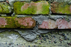Старая стена кирпичей с лишайниками и мхом Стоковые Фотографии RF