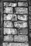 старая стена текстуры Стоковое Фото