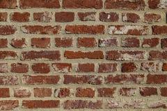 старая стена текстуры Стоковые Фото