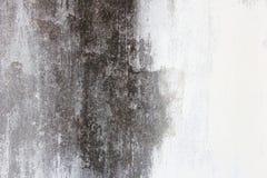 Старая стена, черно-белая Стоковая Фотография