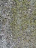 старая стена Стоковая Фотография