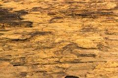 старая текстура деревянная Стоковые Фото
