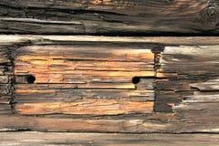 Старая текстура деревянной доски Стоковые Изображения