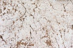 Старая текстура предпосылки стены Стоковая Фотография
