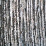 Старая текстура, старая деревянная предпосылка Стоковые Фото