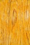 Старая текстура дуба Стоковое фото RF
