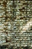 Старая текстурированная кирпичная стена шелушения Стоковая Фотография RF