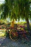 Старая тележка под деревом стоковые фото