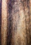 Старая темная деревянная текстура, винтажная естественная предпосылка дуба с wood Стоковая Фотография