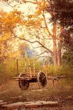 Старая тележка вола в сельской местности Стоковые Изображения RF