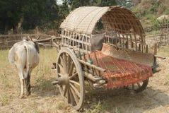 Старая тележка вола используемая для транспорта в сельской Бирме Стоковая Фотография